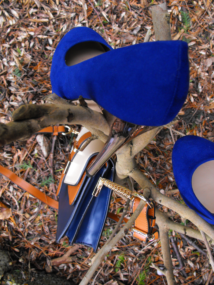 blue shoes and accessorise bag