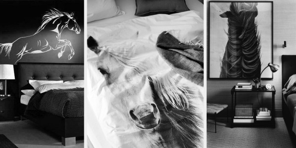 heart for horses at home