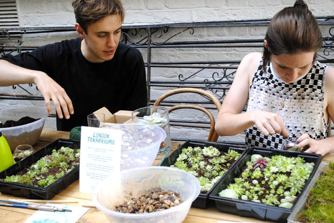 founders of london terrariums company london workshop crafts diy