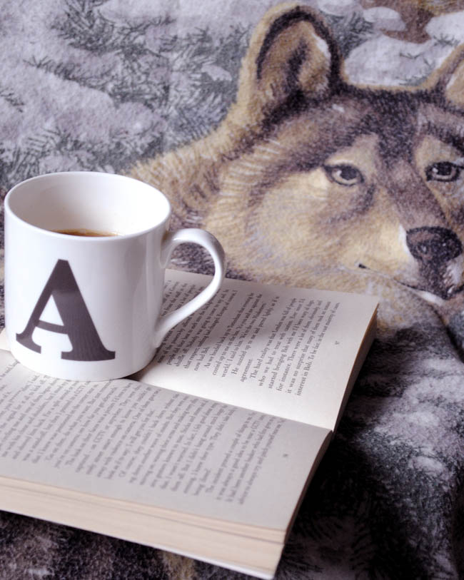 wolf chair cover for reading corner with tea
