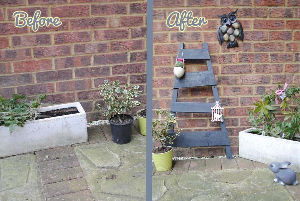 how to transform your garden on a budget