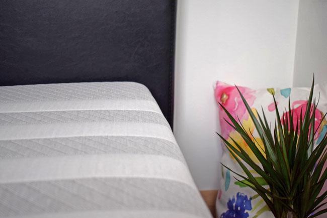bluebellgray pillow dragon plant leesa mattress