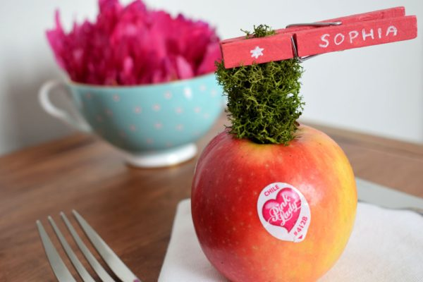 pink lady apple place name DIY project