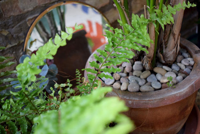 botanical garden in greenhouse restaurant