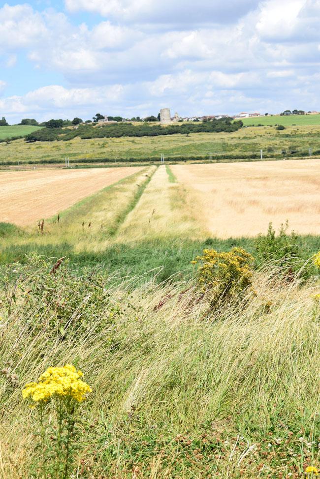 hadleigh castle farm pathway fields