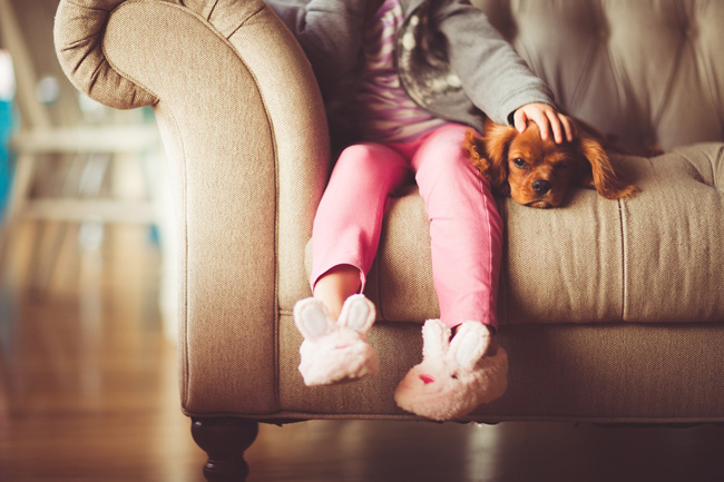 cute-dog-and-girl-on-sofa