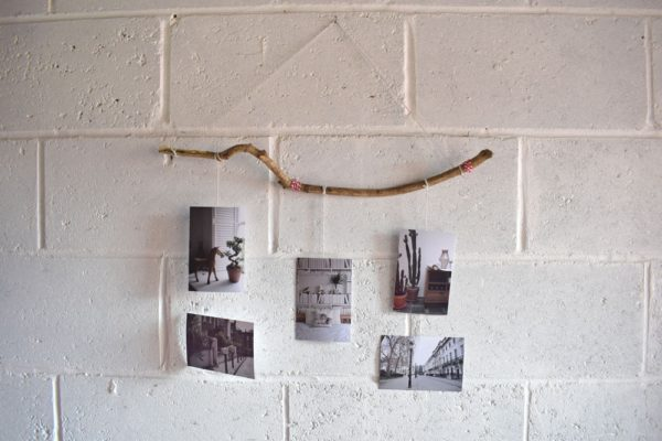 diy-photo-branch-holder-step-by-step-guide