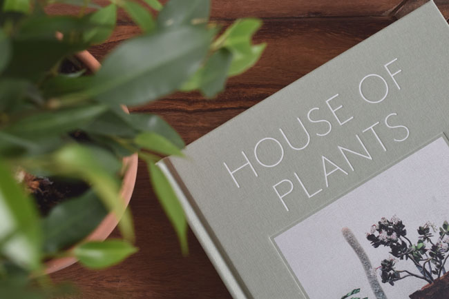 house-of-plants-review-botanicals